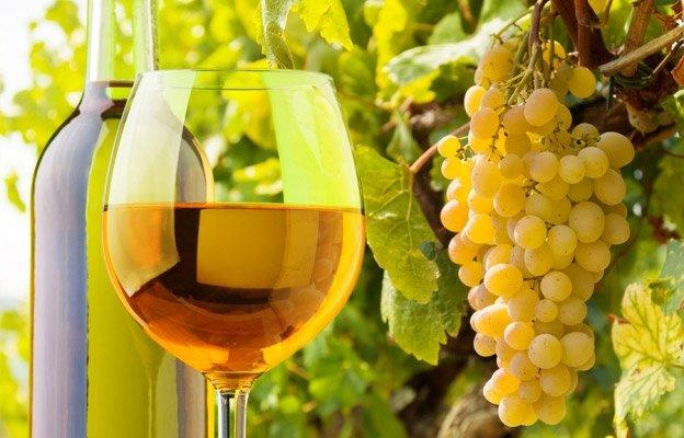 винный сорт белого винограда