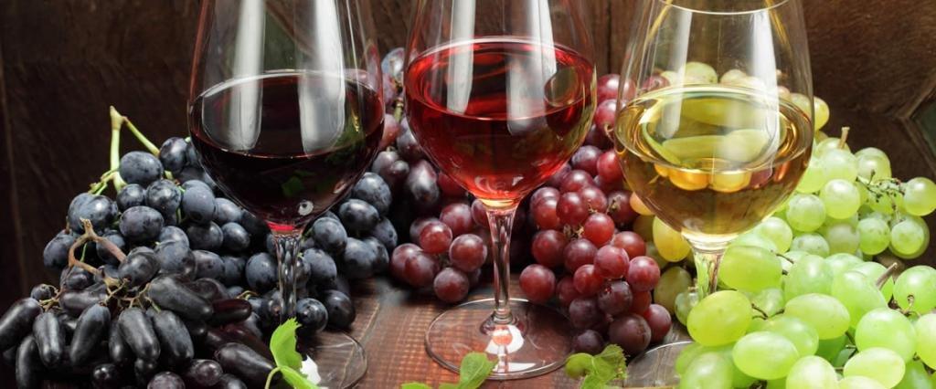 винные сорта винограда для средней полосы