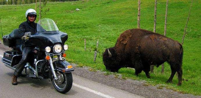 Туристические мотоциклы. Характеристики мотоциклов. Лучшие туристические мотоциклы