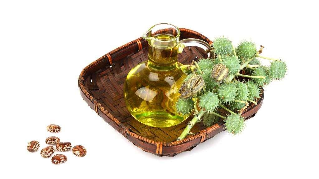 Касторовое масло: отзывы, форма выпуска, свойства, применение в медицине и косметологии