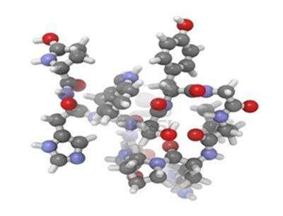 Пептидный гормон ЛГ как регулятор правильной работы половых желез, а также участник выработки прогестерона и тестостерона