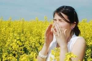 Анализы на аллергены: где сдавать, расшифровка, отзывы