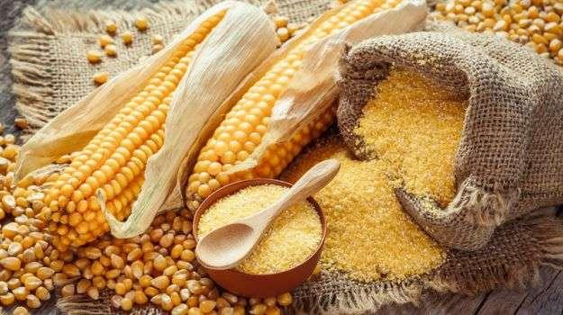 Кукурузное масло: польза и вред, применение, отзывы