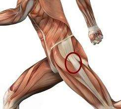 Тазобедренный сустав: боли, лечение, сопутствующие болезни
